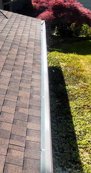 Gutter installation in San Jose