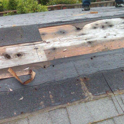 Cracked or missing shingles