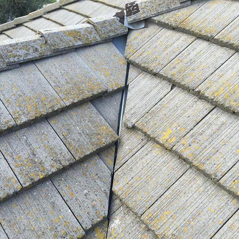 moldy roof shingles