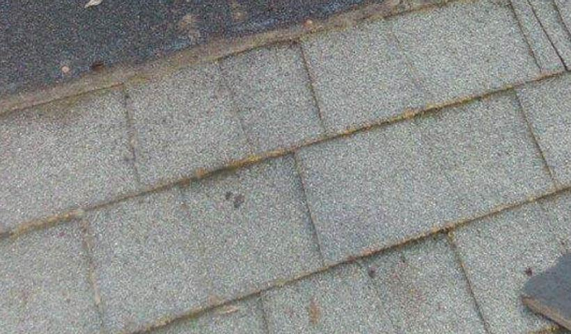 granule loss on the edge of shingles? here's what you need to know